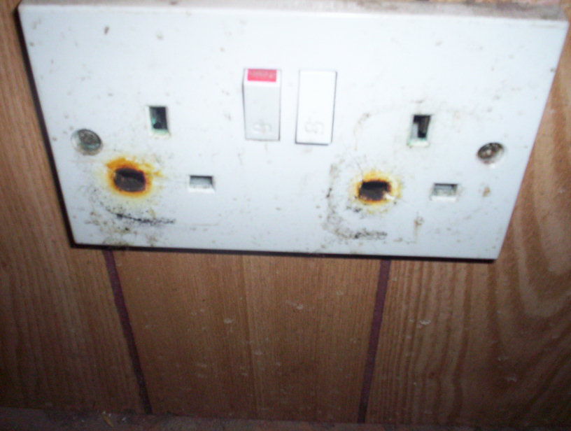 Domestic electrical socket